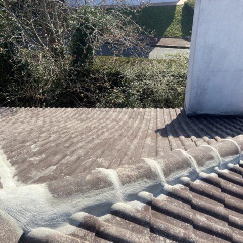 peinture toiture avant