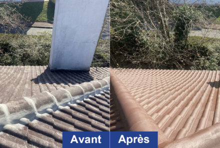 Peinture toiture Triel-sur-Seine 78510